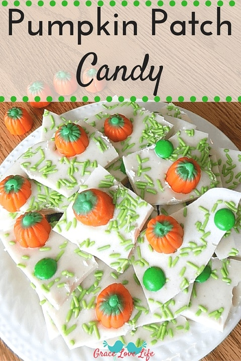White Chocolate bark with green sprinkles to look like grass.  Pumpkins scattered to make it look like a pumpkin patch, broken pieces heaped on a white dish.
