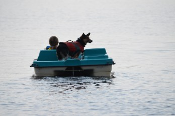 Abby paddle boating with Milo on the back.