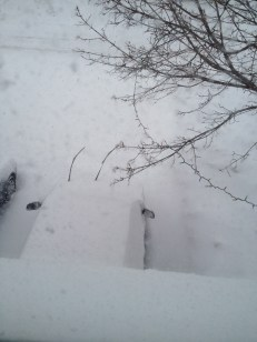 The view from Aiden's room after another snowfall