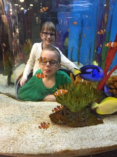 Abby & Aiden found Dory & Nemo!!!