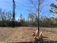Compass Pointe - Dog Park