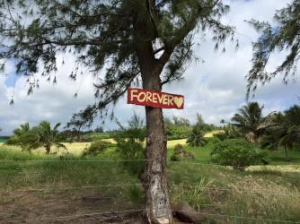Kauai, I love you forever!