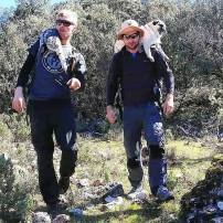 Peregrinos making their way downhill