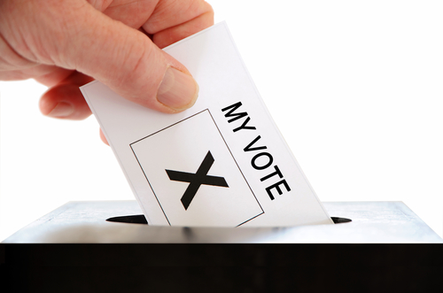 How to Win (or Lose) Elections with High Propensity Voters