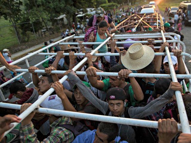 Medical Expert: Migrant Caravan Could Pose Public Health Threat