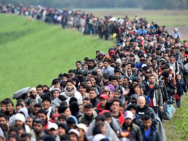 Canada adopts UN migration pact | Power & Politics