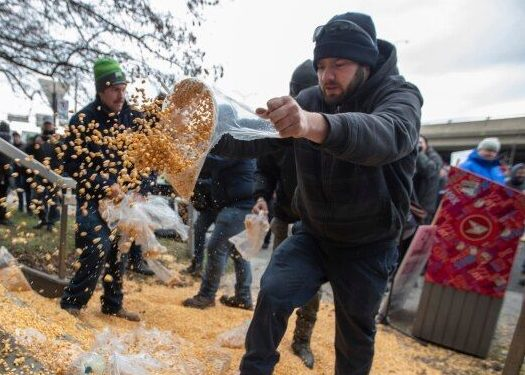 Angry Farmers Dump A Pile Of Corn Outside Trudeau's Montreal Office