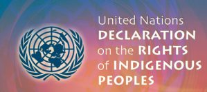 Bill C-15 / UNDRIP: Concerned Citizen Ron Vaillant's Letter to MPs and Senators.