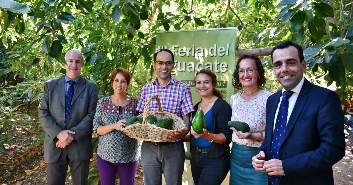 The 3rd Avacado Fair will be in Arguineguín on Sunday December 3rd