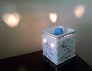 my-new scented-wax-warmer