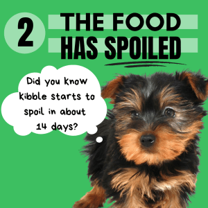 Did you know that kibbled dog foods start to spoil at as early as 14 days after opening the bag? Picky dogs are more sensitive to these changes in their food and will often start out LOVING a food, but two weeks later no longer want to eat it - because it tastes bad.