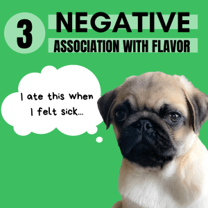 Dog pickiness can become more apparent when dogs have a negative association with a food. Meaning they were sick - ate their food - and then felt WORSE. Incorrectly these picky dogs will associate the food with the cause of being sick.