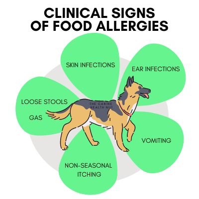 Graphic showing Clinical Signs of Dog Food Allergens