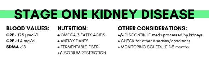 Info-graphic on Stage One Kidney Disease in Dogs