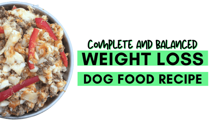 Weight Loss Diet for Dogs