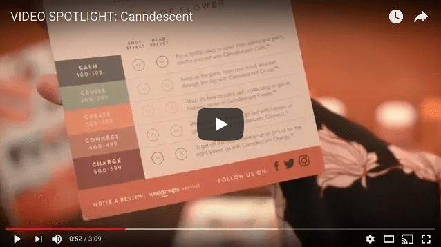 VIDEO: Member Spotlight with Canndescent