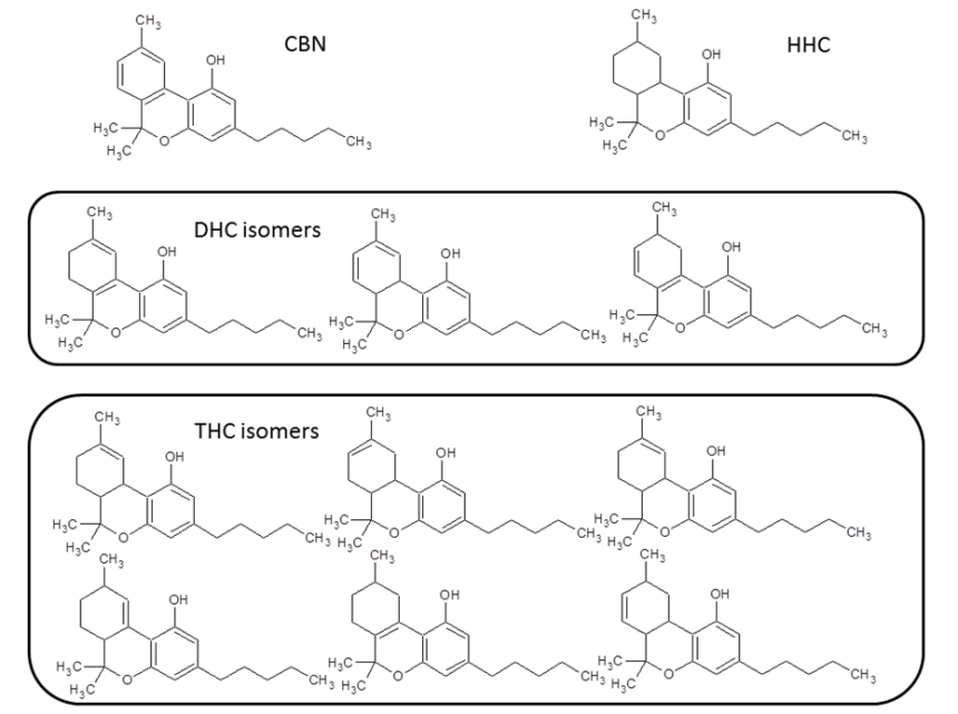 Committee Blog: Cannabinoid Analogues Offer a Promising