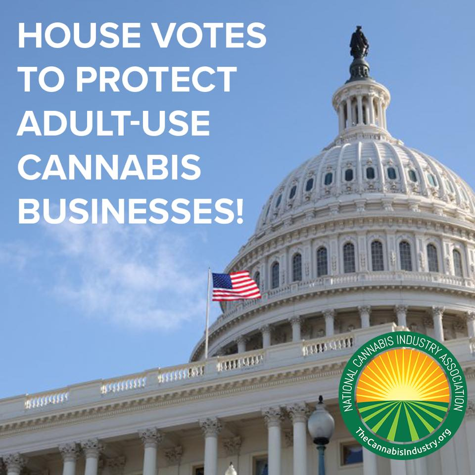 We Made History: U.S. House votes to protect cannabis businesses!