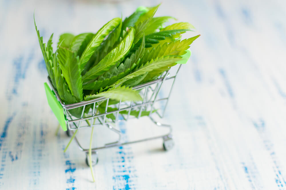 Member Blog: Who is the Canna-Consumer?