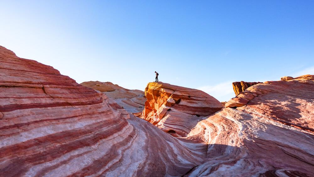 Member Blog: Nevada's Quarter of Discontent