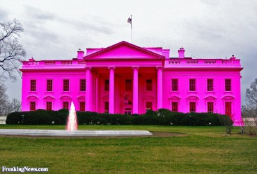 thecan_white_house_pink