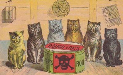 san antonio animal laws exposure to poisons