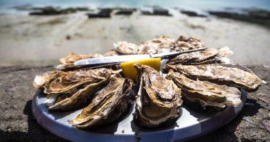 Aw shucks! Whitstable's famous Oyster Festival confirmed for 2021
