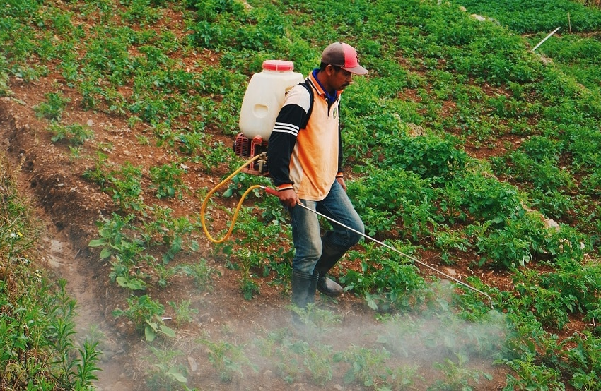 ADNOC-OCI fertiliser joint venture Fertiglobe to float Abu Dhabi IPO