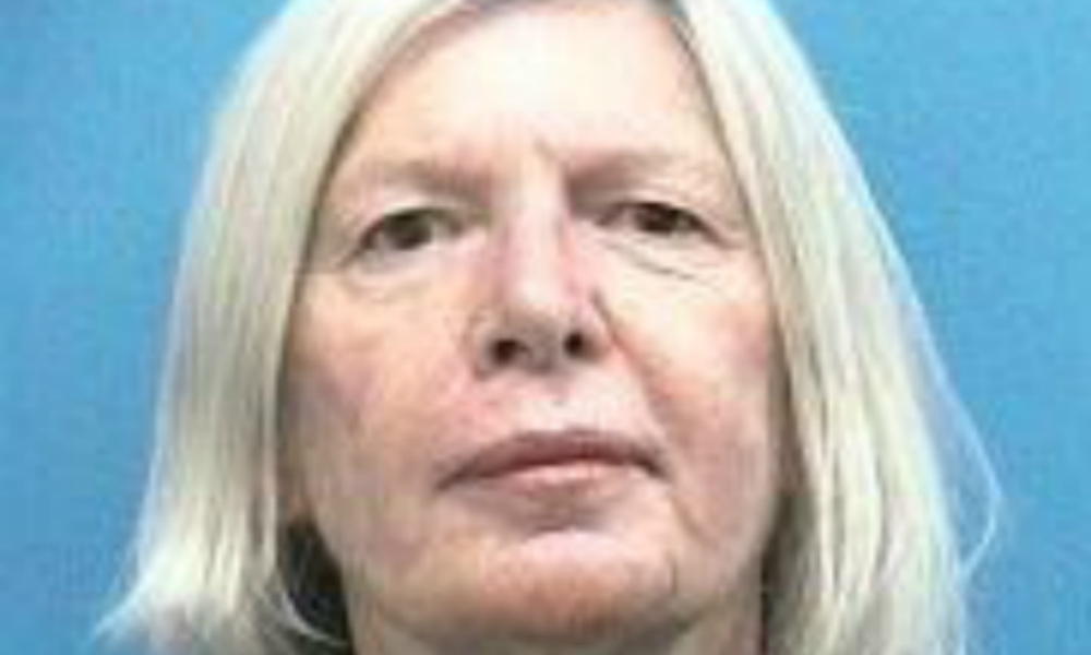 Would-be Jailbird Martin County Commissioner Sarah Heard's Fate Going To Voters Before Jurors