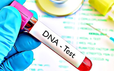 Senator Stargel and Representative Sprowls push for DNA privacy