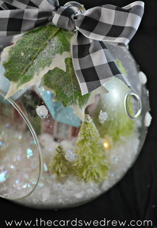 polka dotted glass terrarium