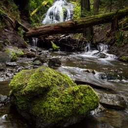 Waterfall And River, Orcas Island, Washington, USA