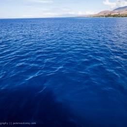 Pure Blue, Maui, Hawaii