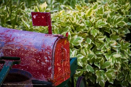 Country Mailbox, Carbondale, Colorado, USA
