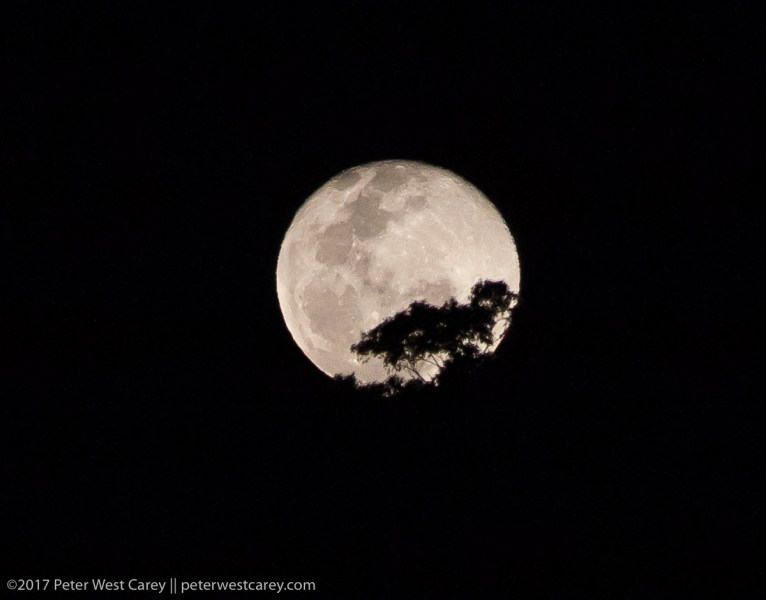 Photo Of The Day - Full Moon Rising Over Australia | The Carey