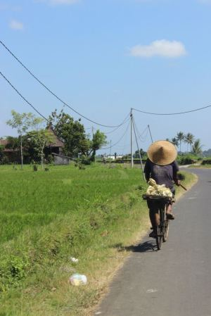 Streets of Bali