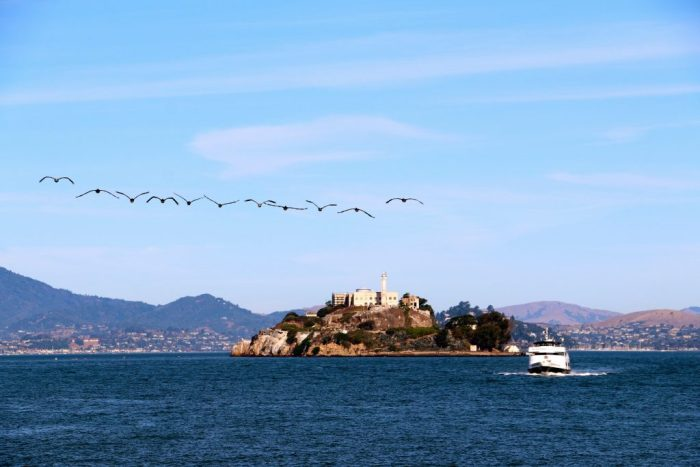 Alcatraz with geese flying above