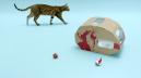 Cat_Caravan_stills_13