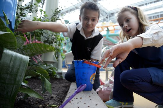 "Convent of the Visitation School third-grader Caroline Schlehuber, right, reacts to the many ladybugs crawling on her hand as classmate Logan Kinsella watches. Third-graders from the Mendota Heights school celebrated Earth Day April 22 by releasing 70,000 ladybugs through­out Mall of America's Nickelodeon Universe amusement park. The ladybugs, which eat aphids and other pests, will act as ""green"" pesticides to protect the live plants throughout the park. The event is part of an ongoing collaboration between the Mall of America in Bloomington  and Visitation's third-graders. This year's theme at the school is ""What I Like About Minnesota,"" and the third-grade students put the nation's largest retail and entertainment complex at the top of their list. Photo by Jim Bovin for the Catholic Spirit"