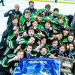 Pioneers capture state hockey title