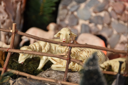 Sheep figurines in the Nativity scene at Angotti's Family Restaurant in Syracuse. (Sun photo | Katherine Long)