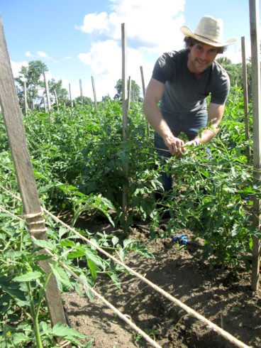 Brady Faith Farm Manager Roy Durgin checks plants Aug. 2 at the Brady Faith Farm off Valley Drive in Syracuse. Durgin has experience growing crops in places including Australia, the Hudson Valley, and the Catskill Mountains. Durgin hopes to obtain a permit so that he can put up a fence to keep deer from raiding the farm. - SUN PHOTO | TOM MAGUIRE