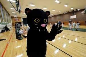 Panther pride at St. Margaret's Nov. 11. (Sun photo | Chuck Wainwright)