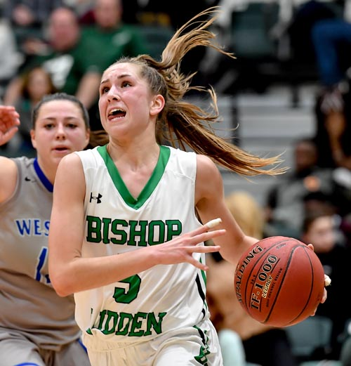 secondary picture Danielle by Roger Hagan 1 - Ludden's Rauch, McManus honored as best in CNY