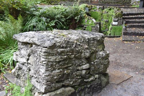 DSC 0003 1 1 - Journey of faith: A pilgrimage to Ireland