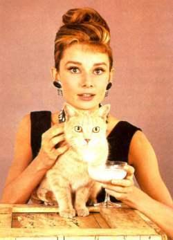 cat_tiffanys_withcat