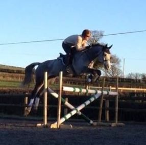 The Cavalry of Heroes - Marc Lovatt jumping Buckbeak Horse in Herefordshire and Wales