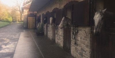 The Cavalry of Heroes - Stables, Livery, Teaching, Appolosa, Friesian, Herefordshire and Wales
