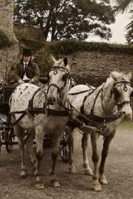 Horse and Carriage Rides around Hay Castle by Marc Lovatt and The Cavalry of Heroes