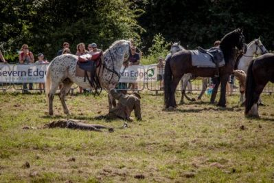 032 The Cavalry of Heroes performing WW1 Trick Riding Horse Show at Kinver Country Fair 2017 Romans, Knights and Highwayman on Horses